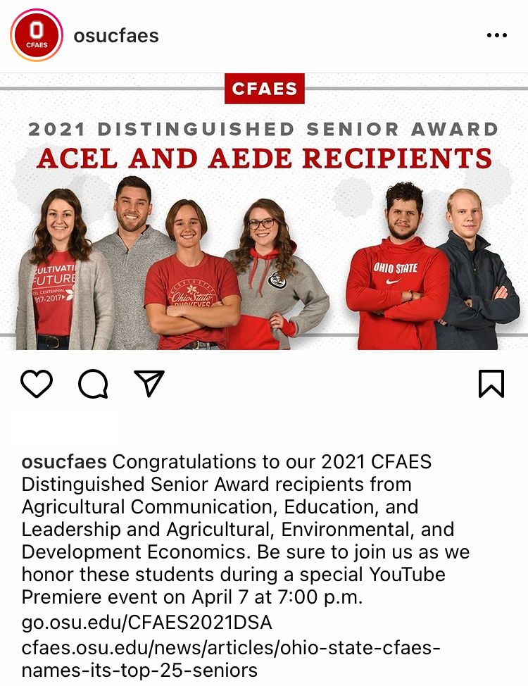 AEDE & ACEL - Instagram Recognition